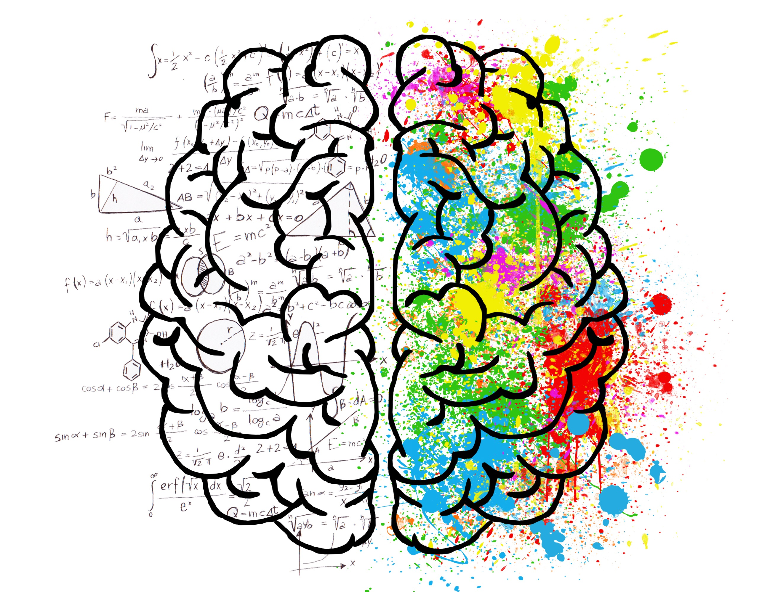 2626x2000 Free Images Brain, Psychology, Idea, Hearts, Love, Drawing
