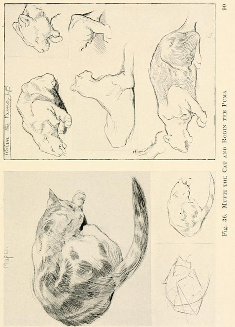 477x664 From The Public Domain Book, Drawing For Beginners, Download