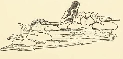 490x237 Mermaid Drawing