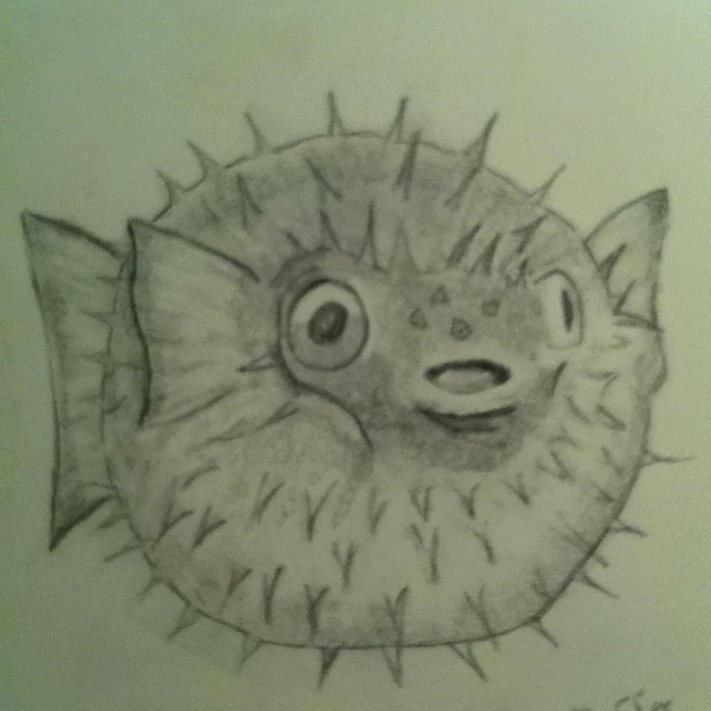 640x640 Puffer Fish !!! Pencil Drawings And Paint Tattoo