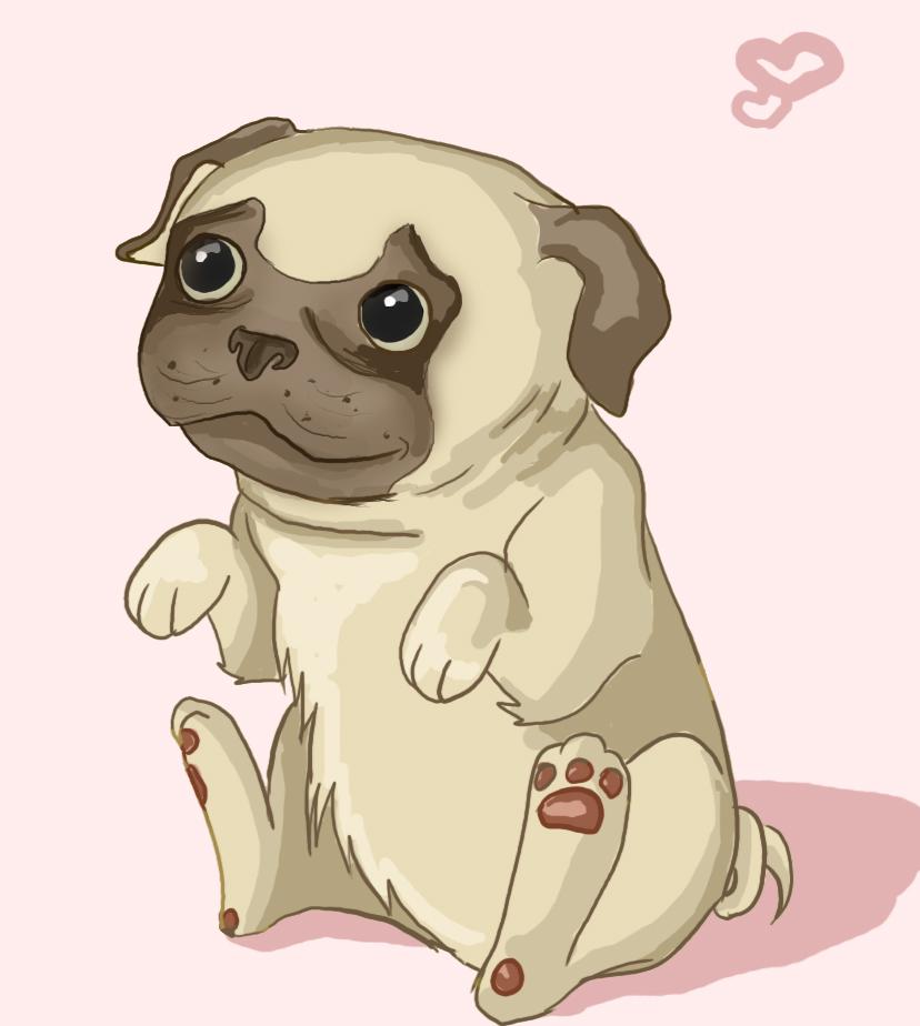 Cool Profile Anime Adorable Dog - pug-cartoon-drawing-60  Trends_195627  .jpg