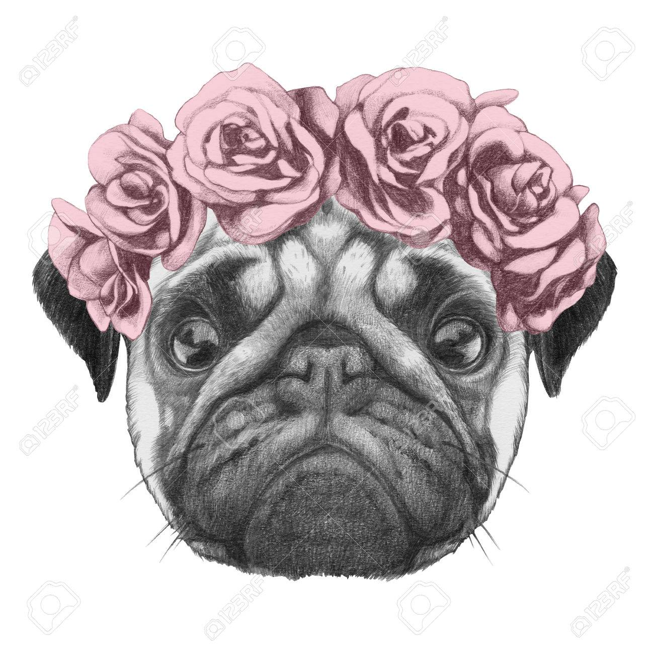 1300x1300 Original Drawing Of Pug Dog With Floral Head Wreath. Isolated