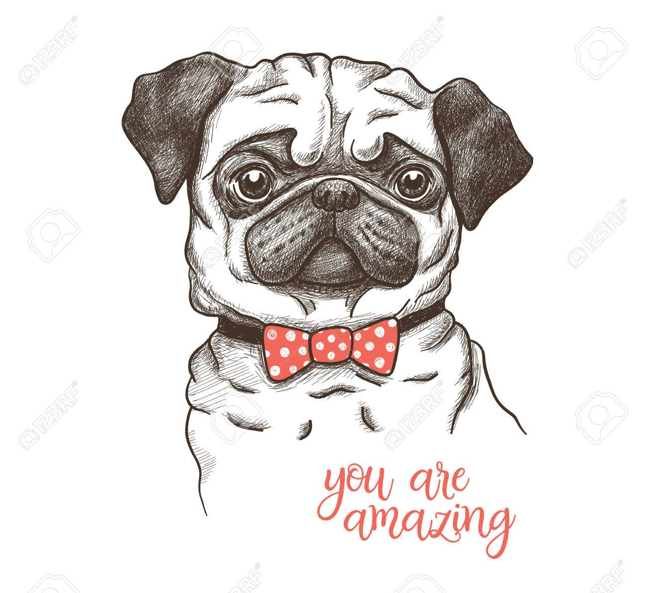 1300x1193 Vector Illustration Of A Hand Drawn Funny Fashionable Pug Royalty