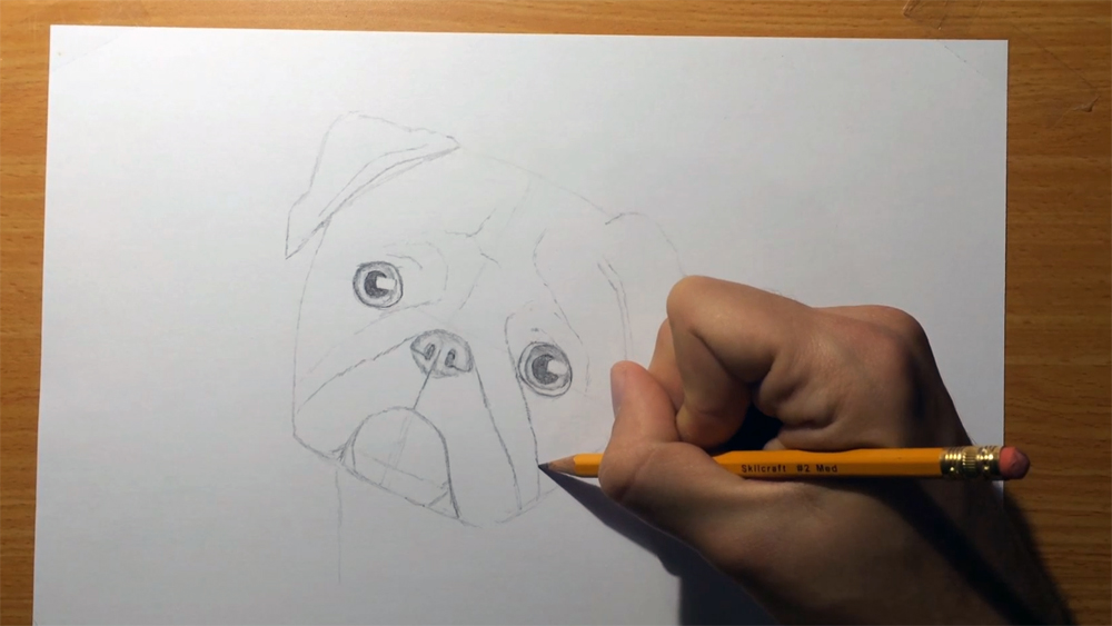 Line Drawing Of Child S Face : Pug face drawing at getdrawings free for personal use