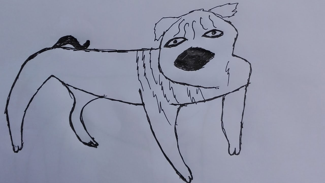 Pug Face Line Drawing : Pug face drawing at getdrawings free for personal