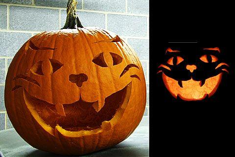 480x320 Cat Pumpkin Carvings Haunting Halloween Cat