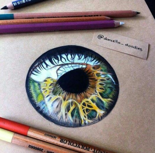 524x517 Amazing Coloured Pupil Drawing Coloured Drawings