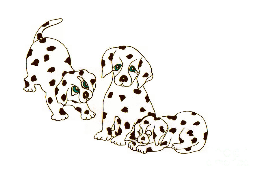 900x611 Dalmatian Puppies Drawing By Rachel Lowry