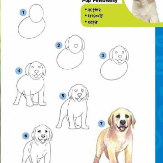 Popular Step By Step Anime Adorable Dog - puppy-drawing-step-by-step-63  Pic_764362  .jpg
