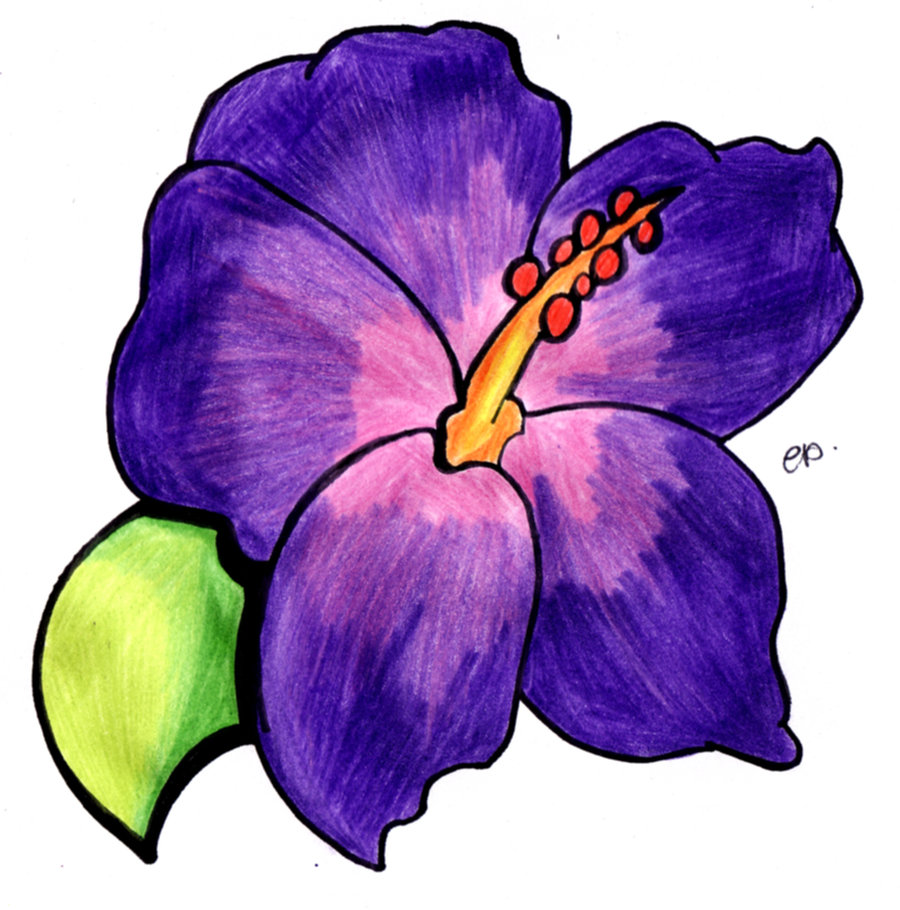 This is a photo of Superb Purple Flowers Drawing