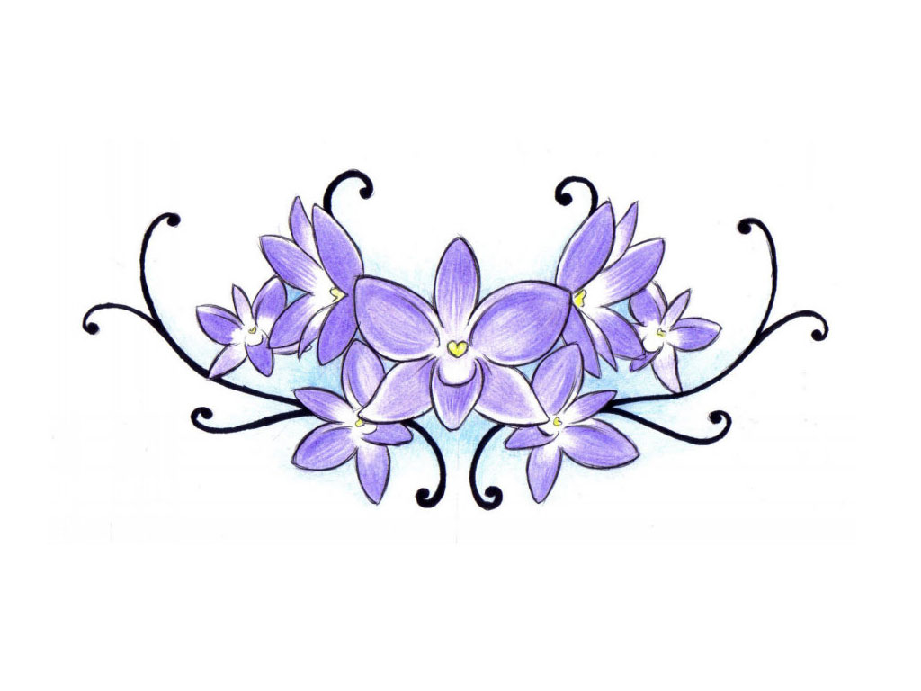 1024x768 eletragesi blue orchid flower drawing images