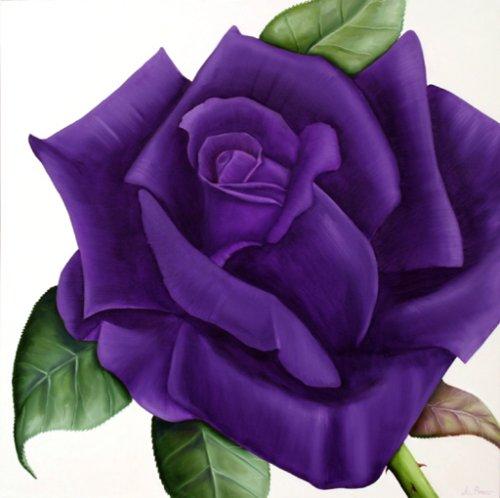500x498 Dark Purple Rose Tattoos Purple Rose