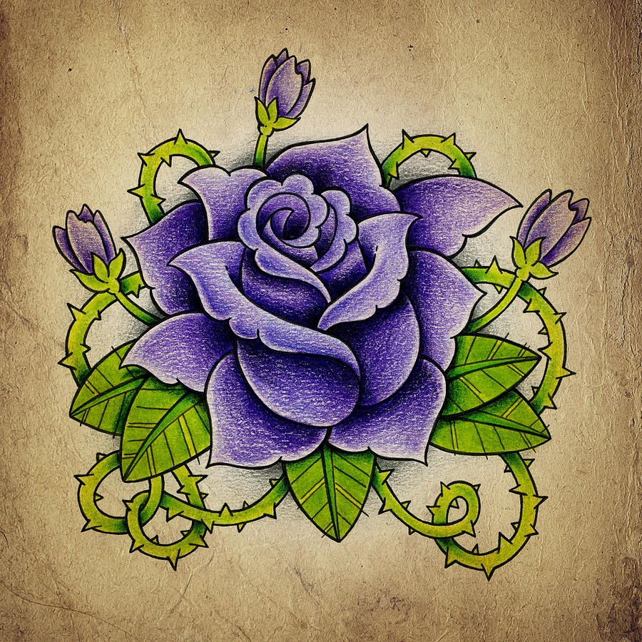 900x900 Purple Rose Photograph By Samuel Whitton
