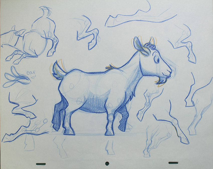 Pygmy Goat Drawing at GetDrawings.com | Free for personal use Pygmy ...