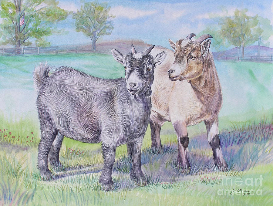 900x679 Goats Painting By Gail Dolphin