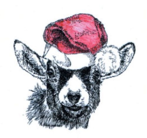 500x469 Pygmy Goat With A Christmas Hat Drawing! Goat Drawings