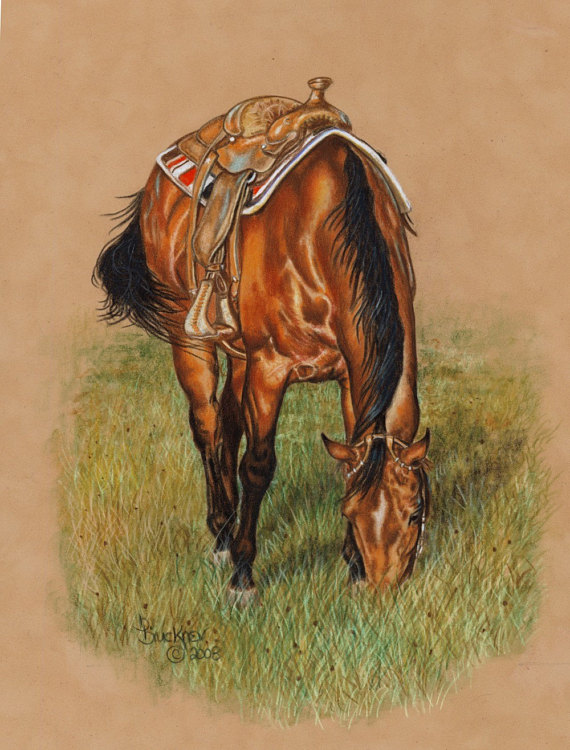 570x750 Grazing Quarter Horse Print From Colored Pencil Drawing B