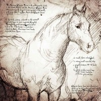 200x200 Quarter Horse Detail Detail Of A Da Vinci Style Drawing