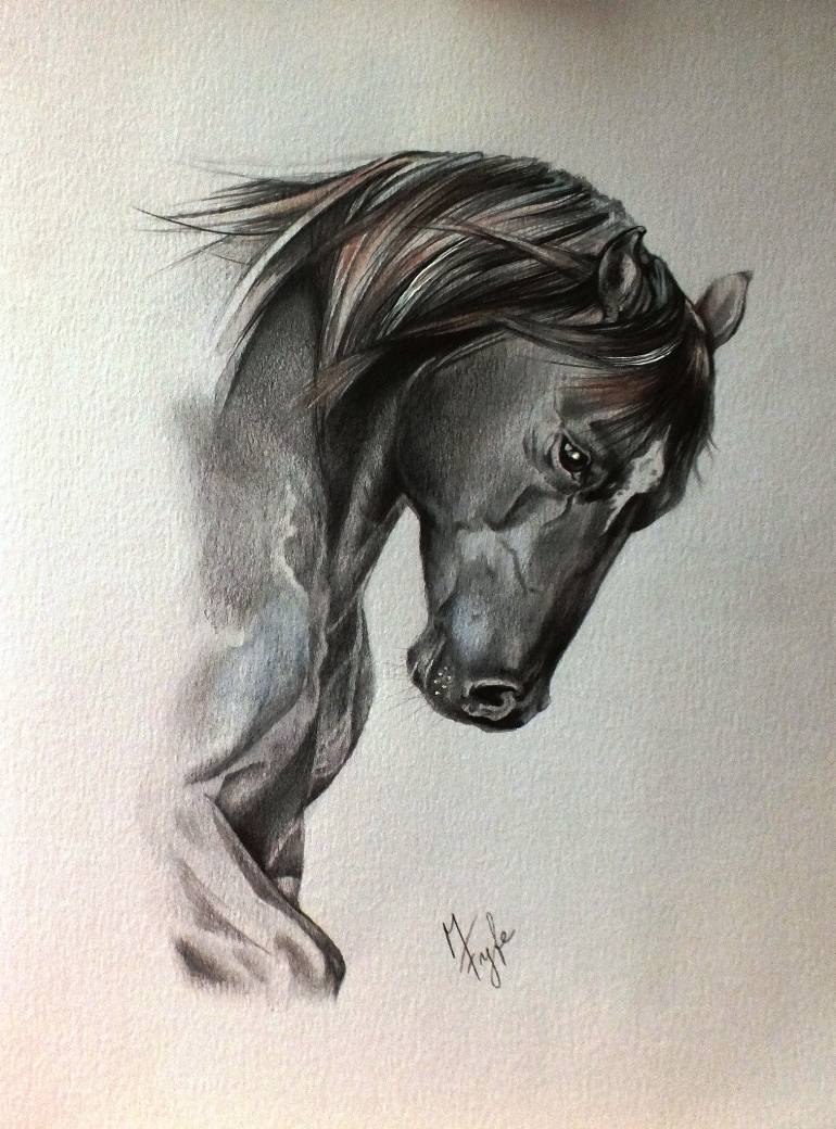 770x1040 Saatchi Art Quarter Horse Drawing By Marika Fyfe