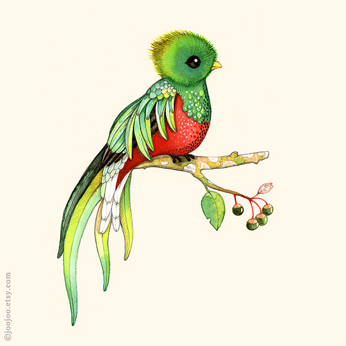 500x500 Quetzal Watercolor Painting Tattoo, Quetzal Tattoo And Tatoo