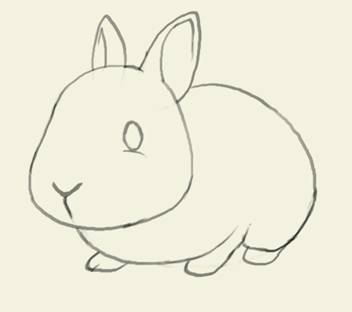 500x444 How To Draw Bunny