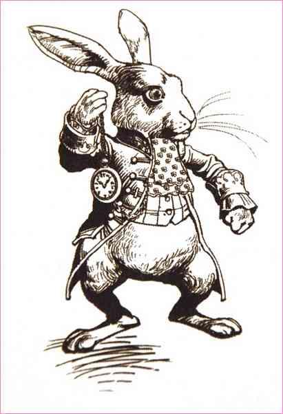 411x602 Alice In Wonderland White Rabbit Drawing