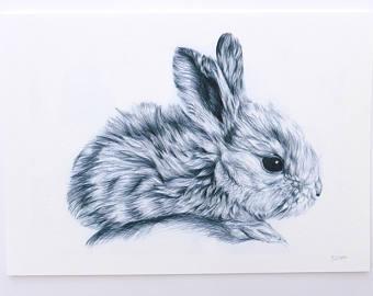 340x270 Bunny Drawing Etsy