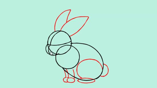 550x309 How To Draw A Bunny 13 Steps (With Pictures)