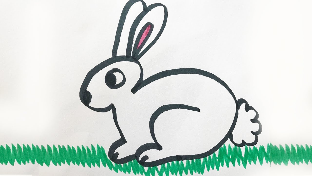 1280x720 Easy Drawing Of A Rabbit How To Draw And Color A Bunny For Kids