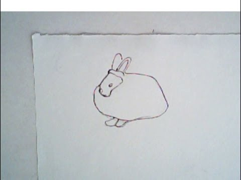480x360 How To Draw An Angora Rabbit (Easy Drawing Tutorial)