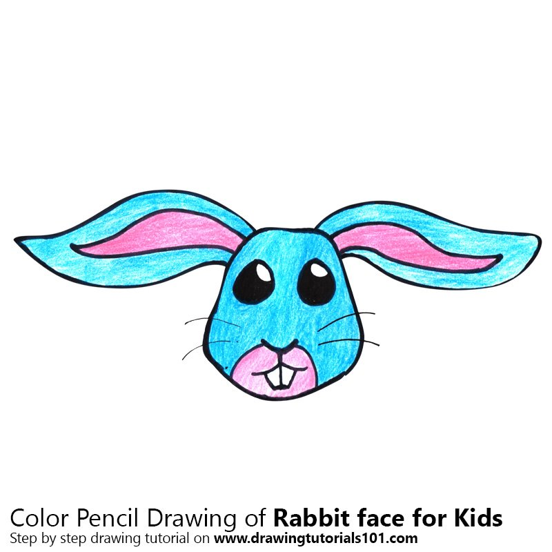800x800 Learn How To Draw A Rabbit Face For Kids (Animal Faces For Kids