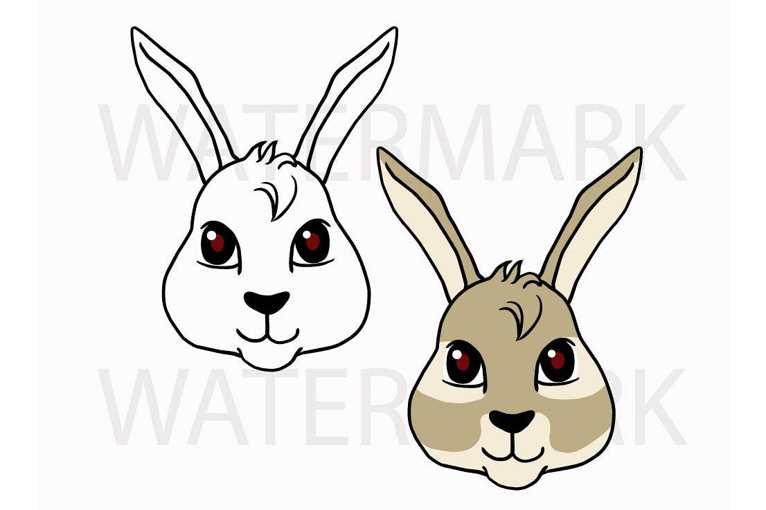 1106x737 Bunny Rabbit Head So Cute!