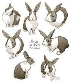 236x273 Bunny Drawings