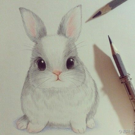 440x440 Cute Drawing Of A Bunny