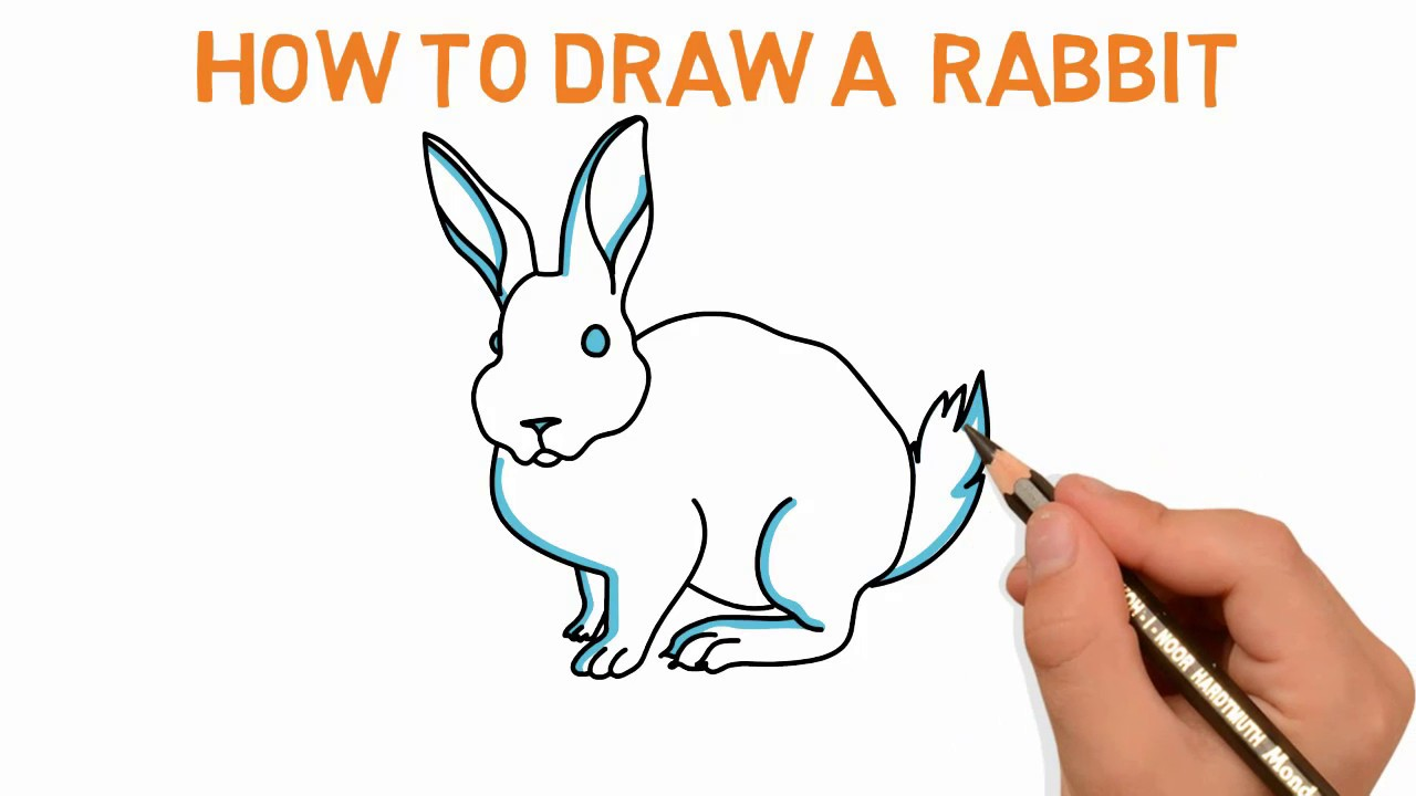 1280x720 Rabbit How To Draw A Rabbit Sketch Drawing Video Demo Latest