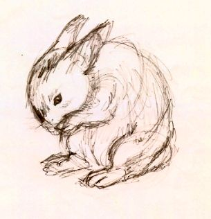 305x316 Rabbit Sketch By ~emmary On The Hare's Tale