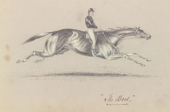 685x452 Spirited Australia's Horse Story
