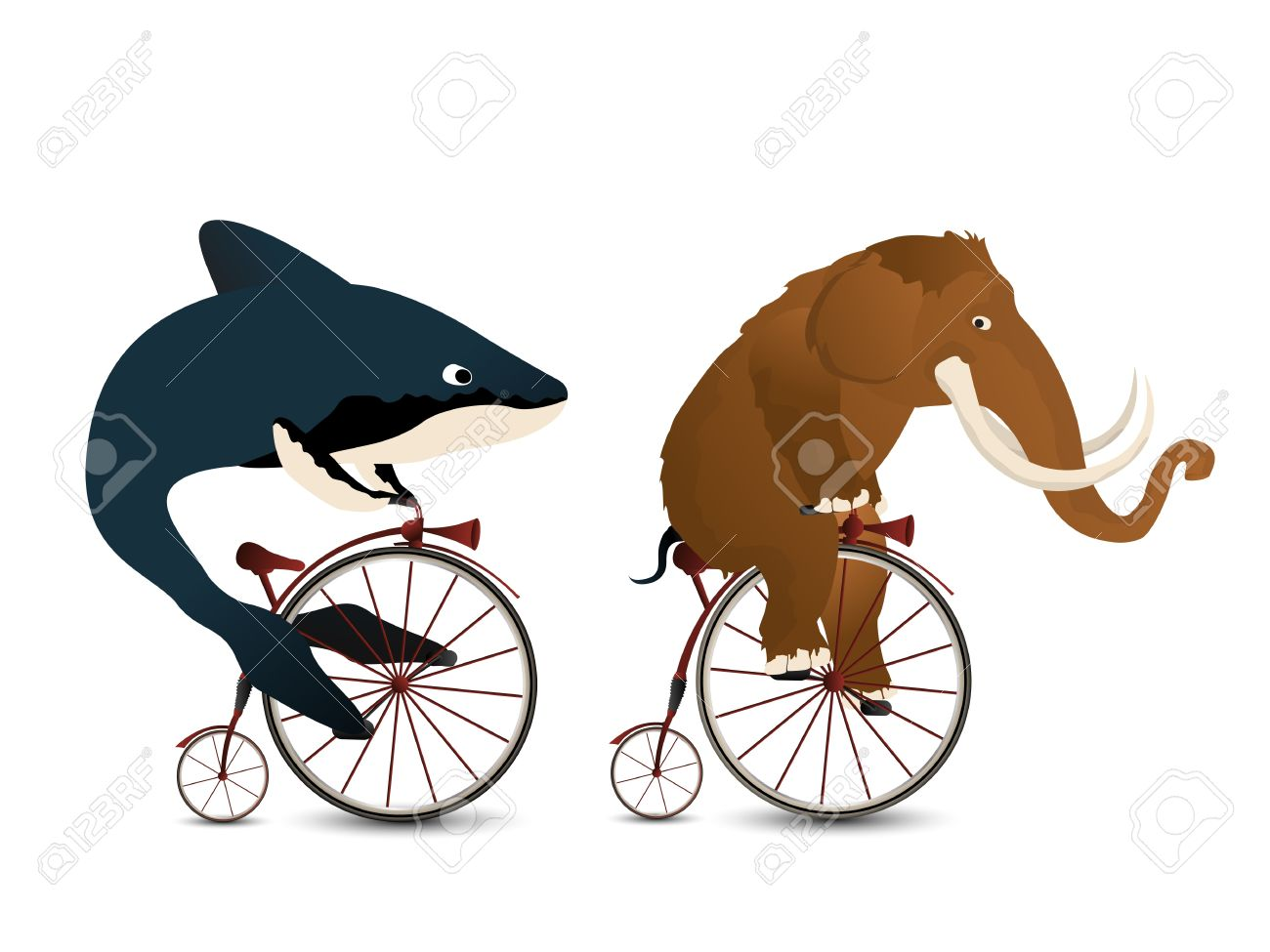 1300x975 Cartoon Style Drawing Of A Mammoth And A Whale Racing On Bicycles