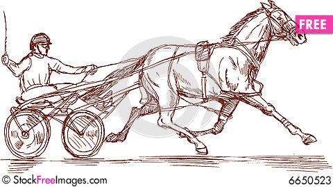 480x269 Harness Racing