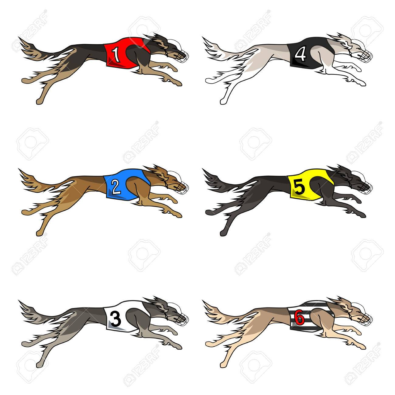 1300x1300 Vector Set Of Running Dog Saluki Breed, In Dog Racing Or Coursing
