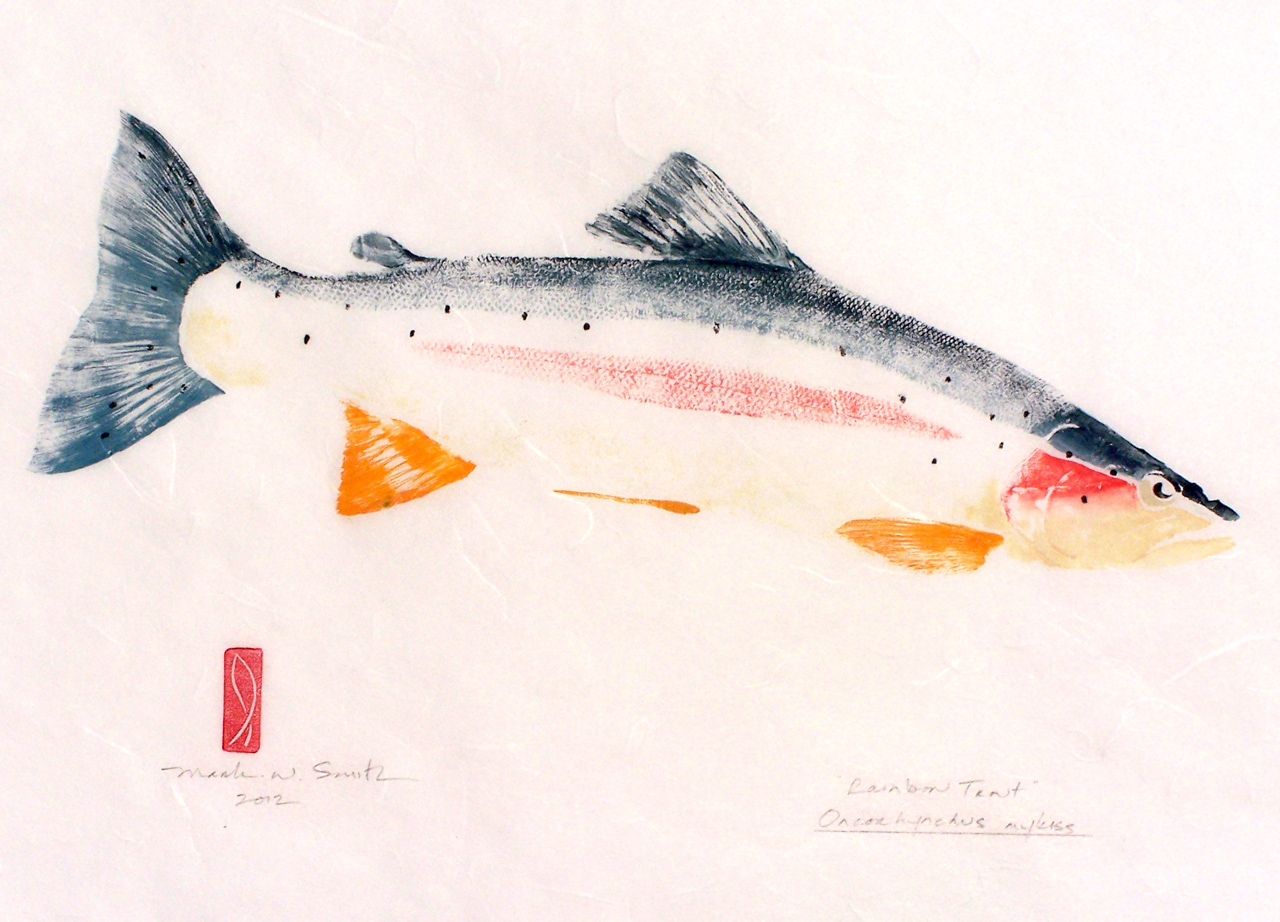 1280x922 Rainbow Trout Drawing Template Rainbow Trout Gyotaku Rainbow