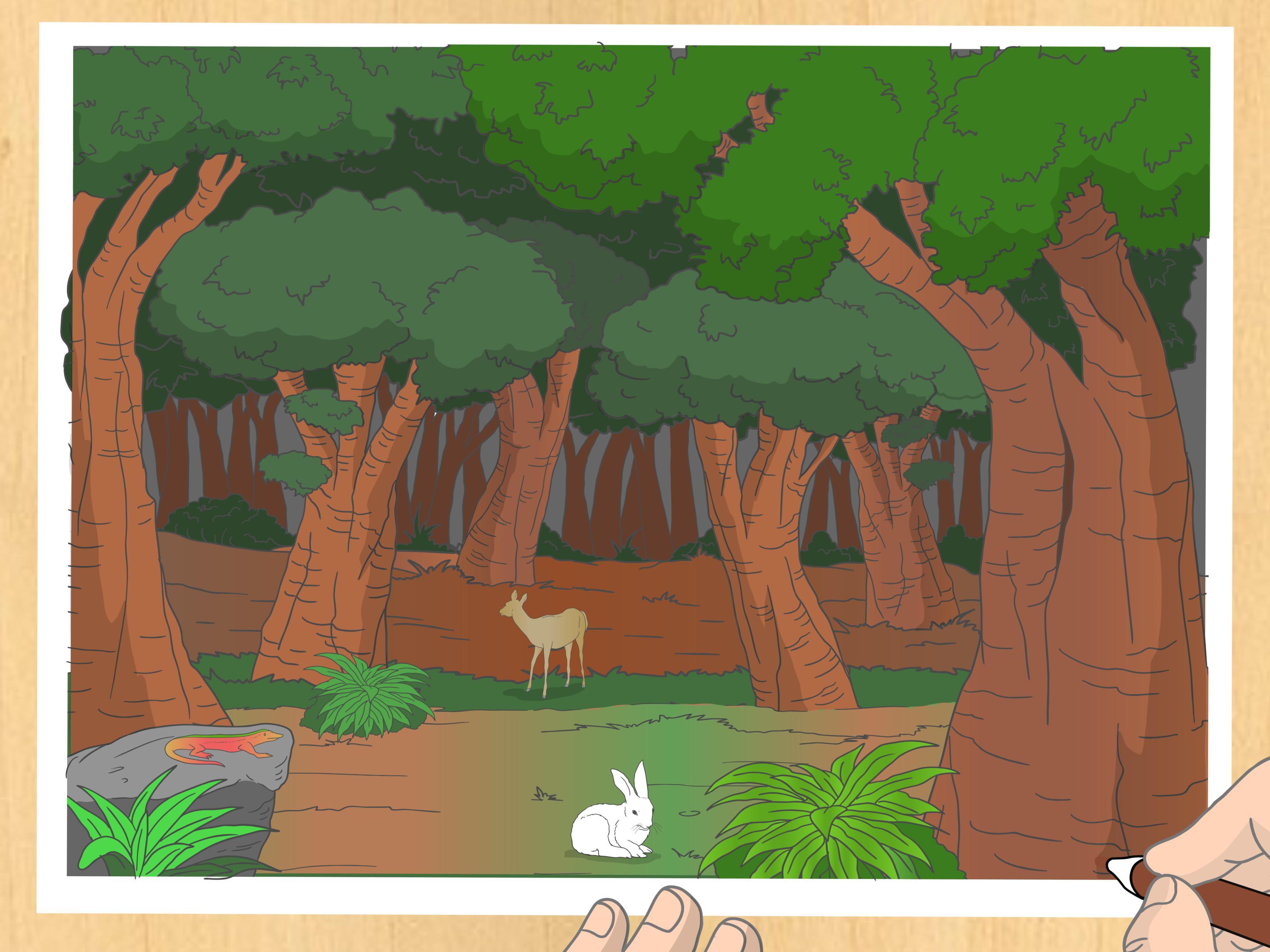 3200x2400 3 Ways To Draw A Forest