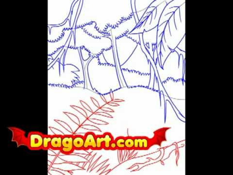 480x360 How To Draw A Rainforest, Step By Step