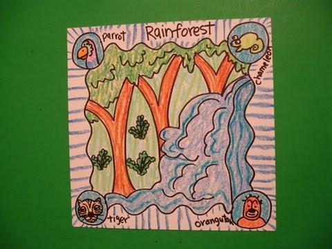 480x360 Let's Draw An Animal Habitat The Rain Forest!