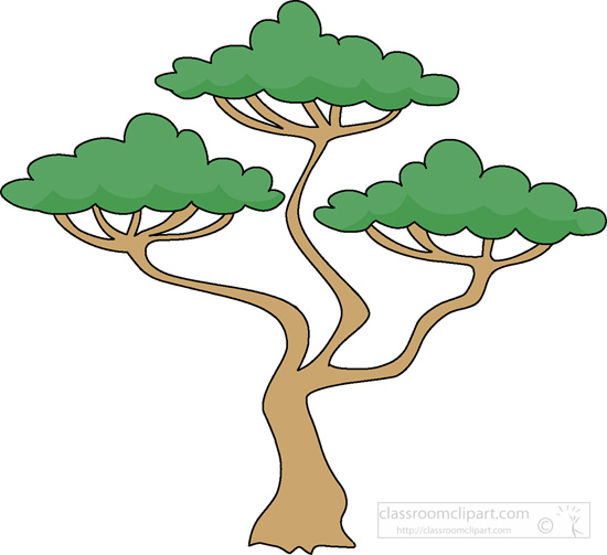 550x503 Tree Clipart Rainforest