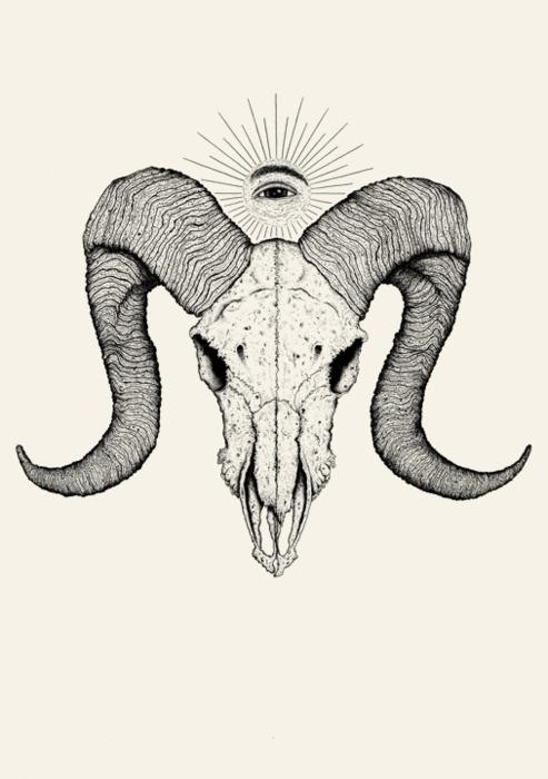 493x700 I Love Ram Skulls Dreamstate Ram Skull, Aries