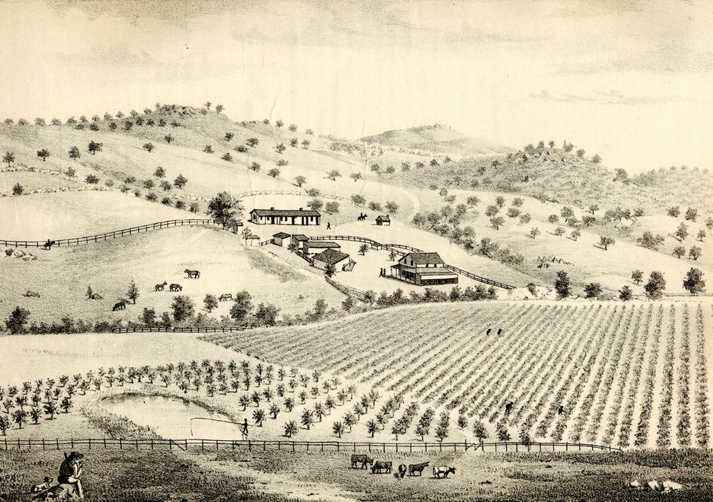 1024x722 Brief History Of Ranch Guejito