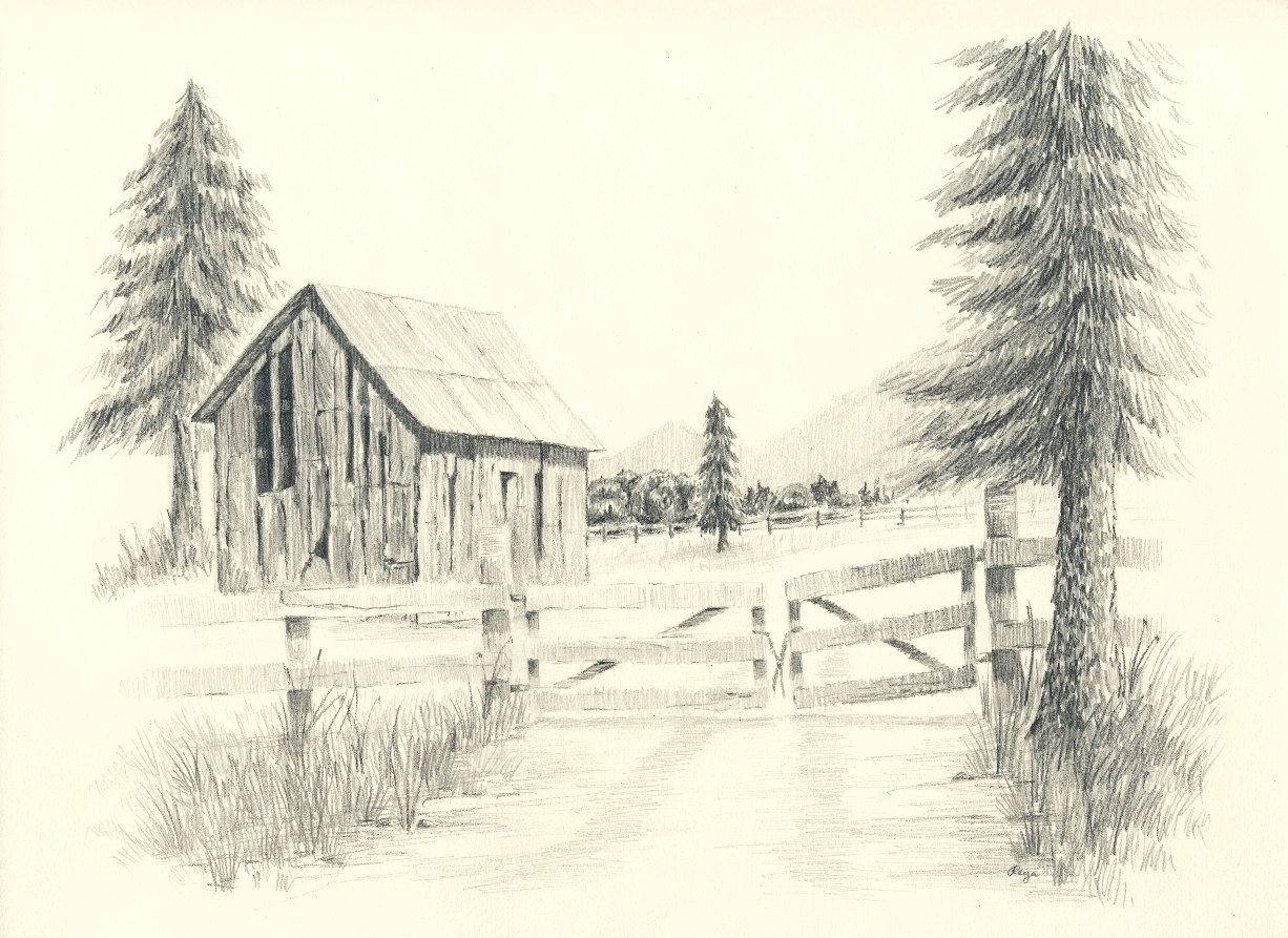 1226x893 Old Ranch Barn Pencil Drawing Print Wood Fences, Pine Tree