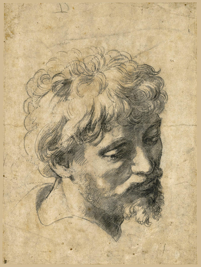 678x900 Head Of A Young Apostle Drawing By Raphael