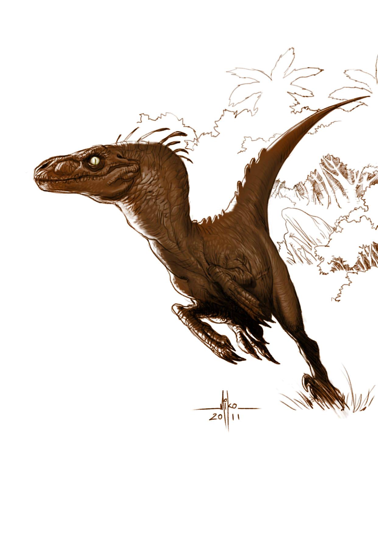 1241x1764 Raptor.jpg Pixels Dinosaurs Prehistoric